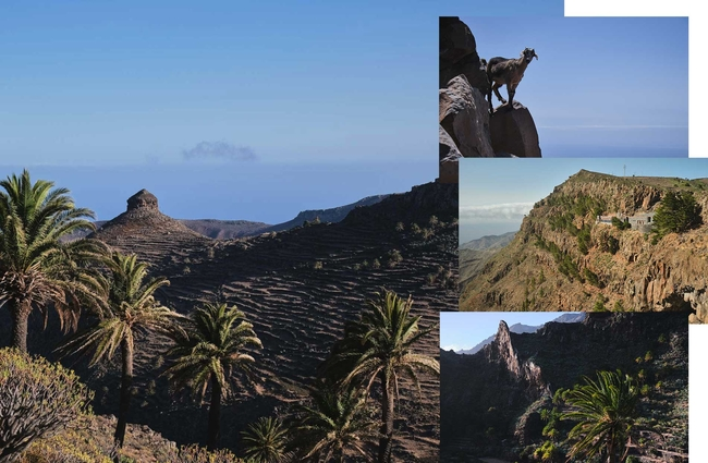La Gomera Walking Canary Islands Hiking Adventure Dan WildeyDJWA2894 3648 Collage 3 Brown